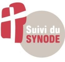 Logo suivi du synode