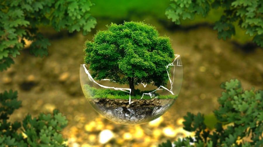 prier pour la planète